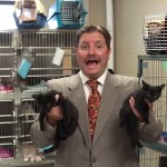 A Motivated Salesman in a Loud Tie Offers a Great Deal on a Variety of Cats in an Amusing Adoption Ad