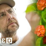 Man Behind the World Famous 'Carolina Reaper' Shares His Mission to Make Even Hotter Peppers