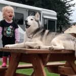 A Little Girl and Her Beloved Dog Have Loud Conversations in a Language of Their Very Own