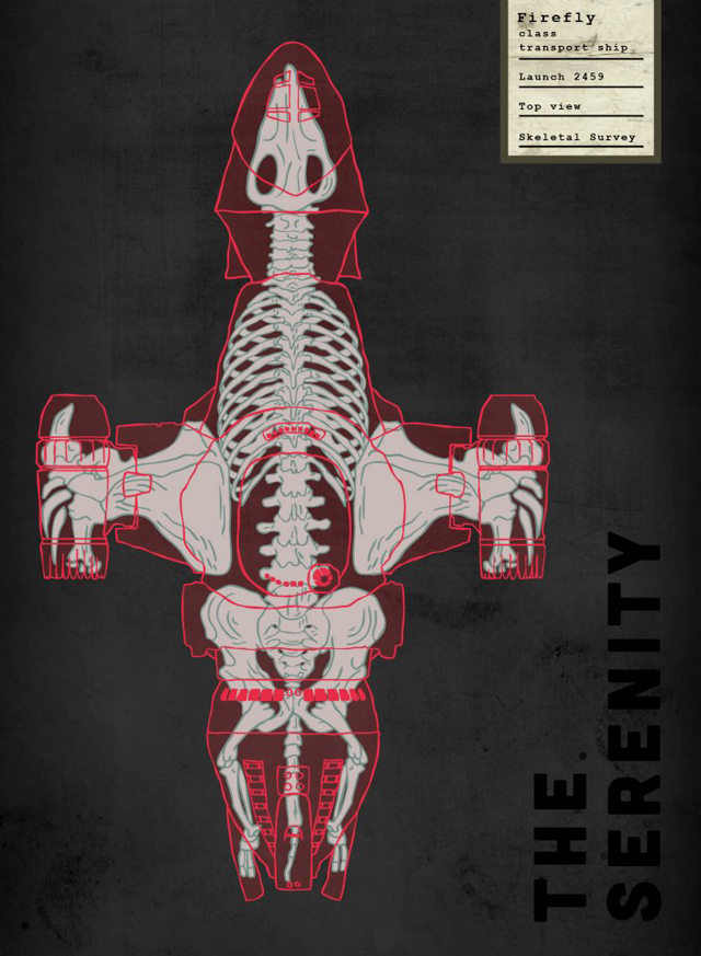 Spaceship Skeletal Surveys, Anatomical Illustrations of ...