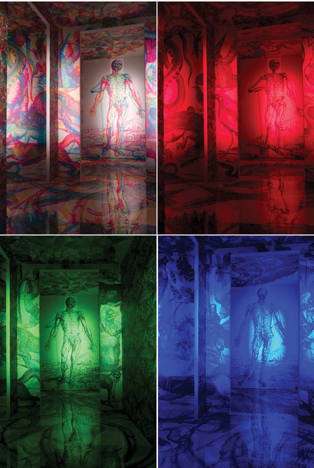 RGB, Primary Color Filters Beautifully Expose Layered Images