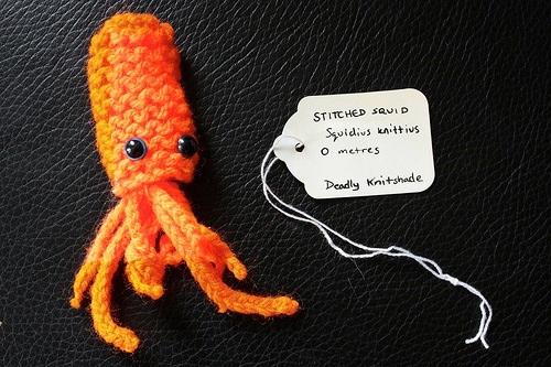 Stiched Squid