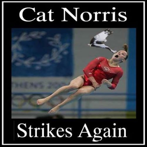 Cat Norris Strikes Gymnast image