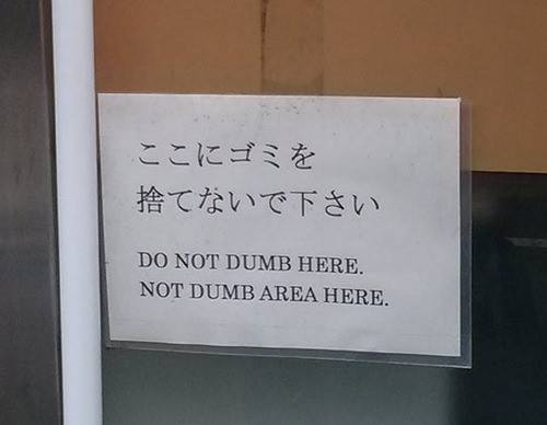 Do Not Dumb Here