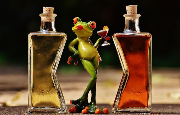 frogs-1650657_1920