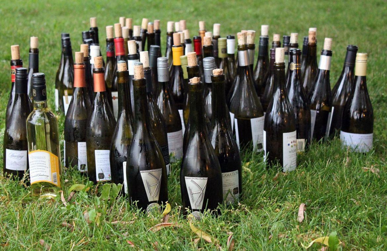 vino wine