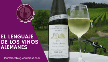 El lenguaje de los vinos alemanes