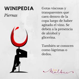 Winipedia Qué son las piernas de un vino