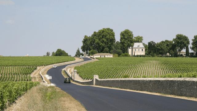 Región vitivinícola de Burdeos Bordeaux