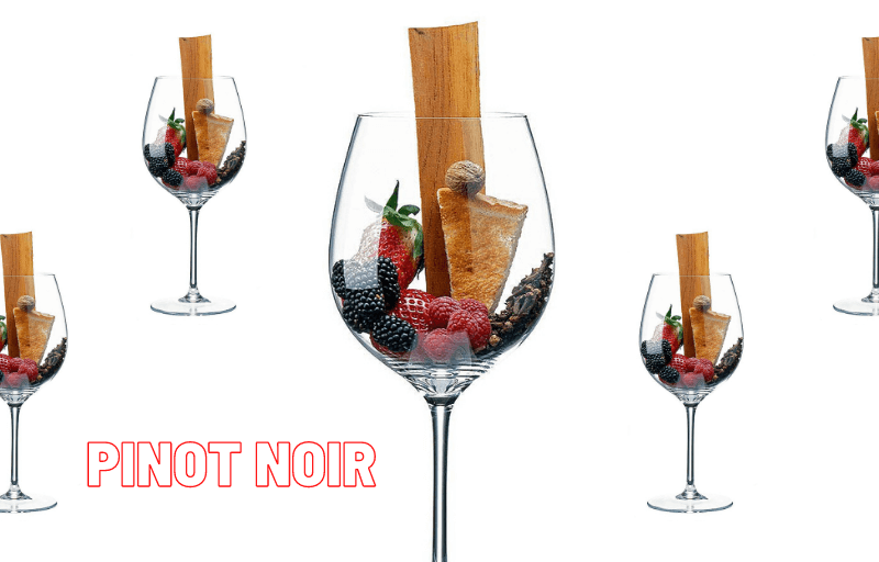 Cepa Pinot Noir