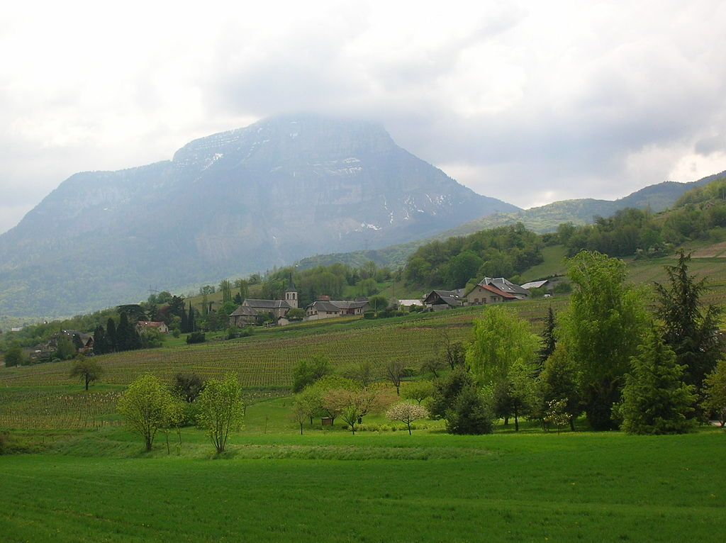 Vino de Saboya Savoie