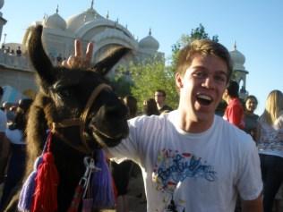 101. Llama Fest