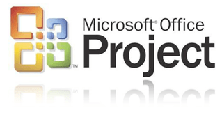 microsoft project best practices