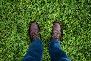 land on own 2 feet_pixa_no attribution