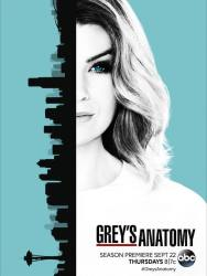 greys-anatomy-saison-13