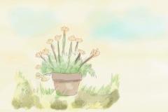 Sweet Flower
