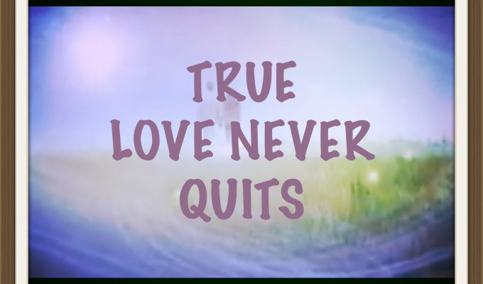 True Love Never Quits