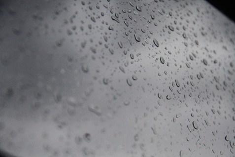 Rain (19)