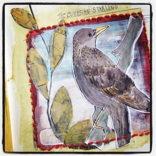 Eurasian Starling