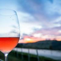 Enoturismo: 5 vinícolas para visitar na Serra Catarinense