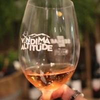 Programação da Vindima na Serra Catarinense reúne 15 vinícolas a partir de 28/2. Confere!