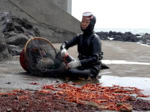 Elderly woman in scuba gear sits with catch and bright starfish