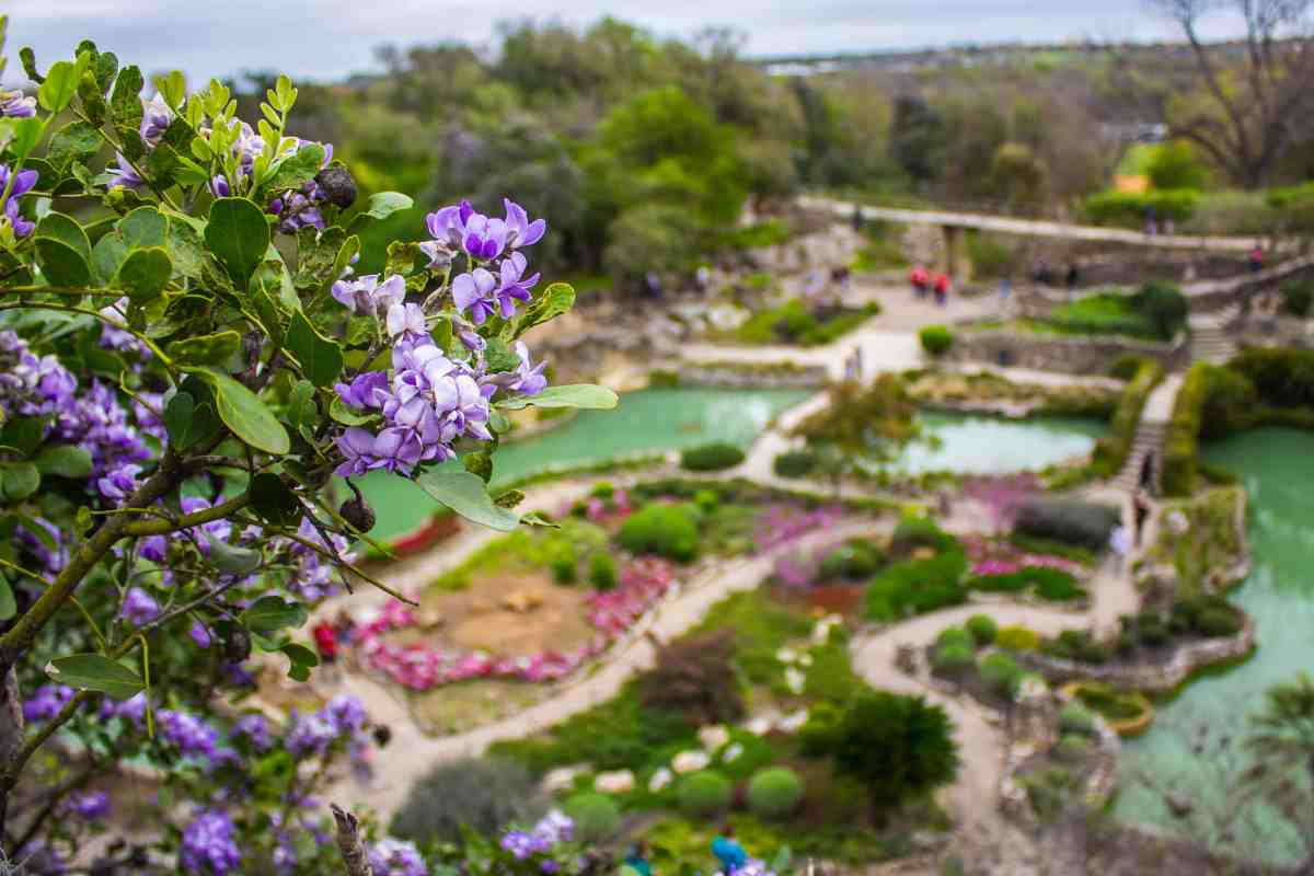 Escape to Nature in San Antonio