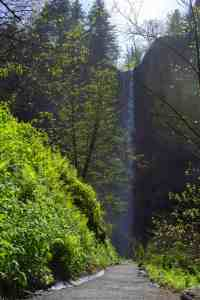Lower Latourell Falls - Columbia River Gorge - www.lauraenroute.com