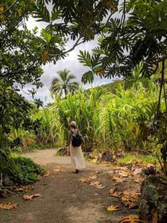 Native Collections at Waimea Valley Botanical Gardens, Oahu - www.lauraenroute.com