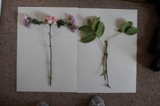 Own flowers in shape of letters