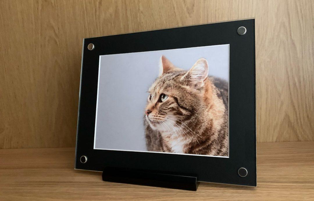 folio art frame