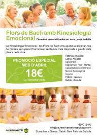 Cartel Terapia con Flores de Bach