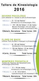 Flyer Xavier Silvestre Teràpies Cursos de Kinesiologia