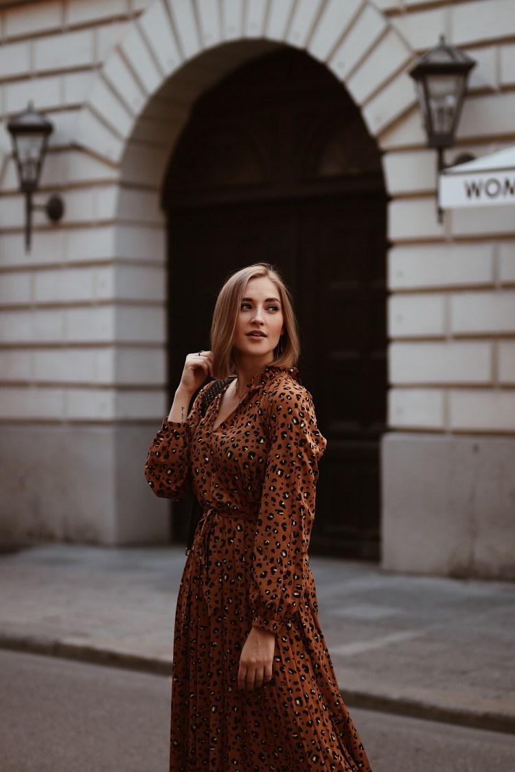 Laura Herz and other stories Leoprint Dress