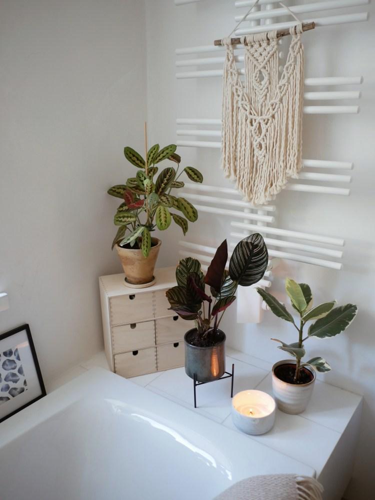 Pflanzen Badezimmer