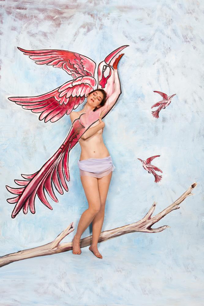 red-pink-bird