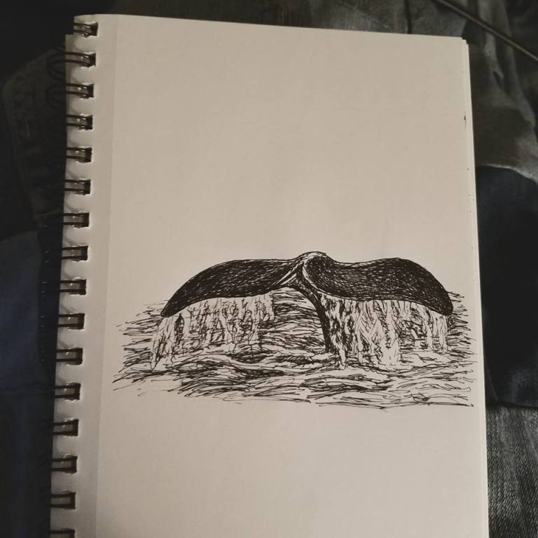 Sketchbook view of Whale by Laura Jaen Smith. Black and white ink drawing of whale's tail coming out of water.
