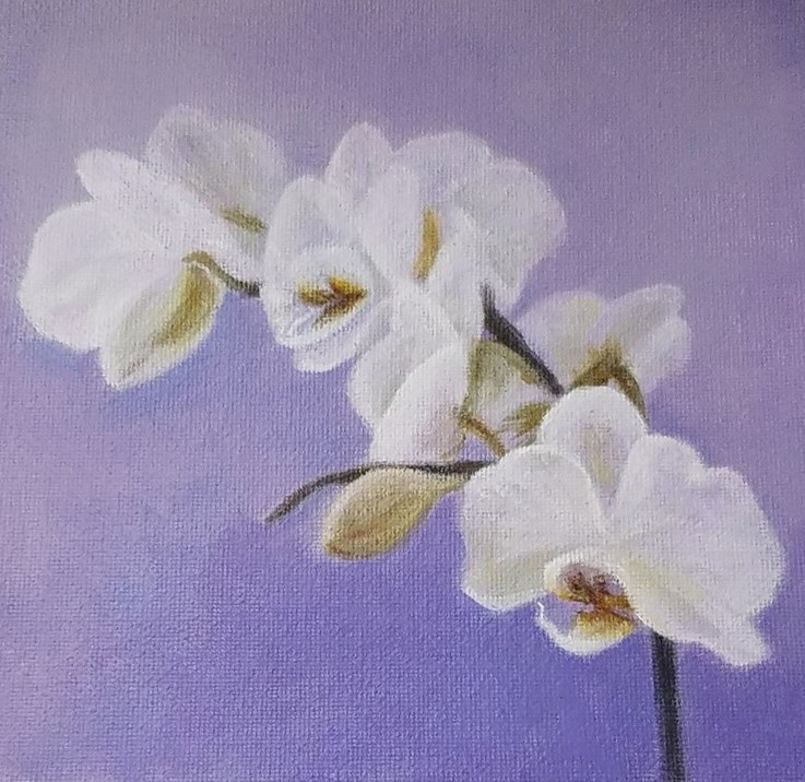 Orchid with Lavender by Laura Jaen Smith. Square acrylic painting of white orchid with light purple background.