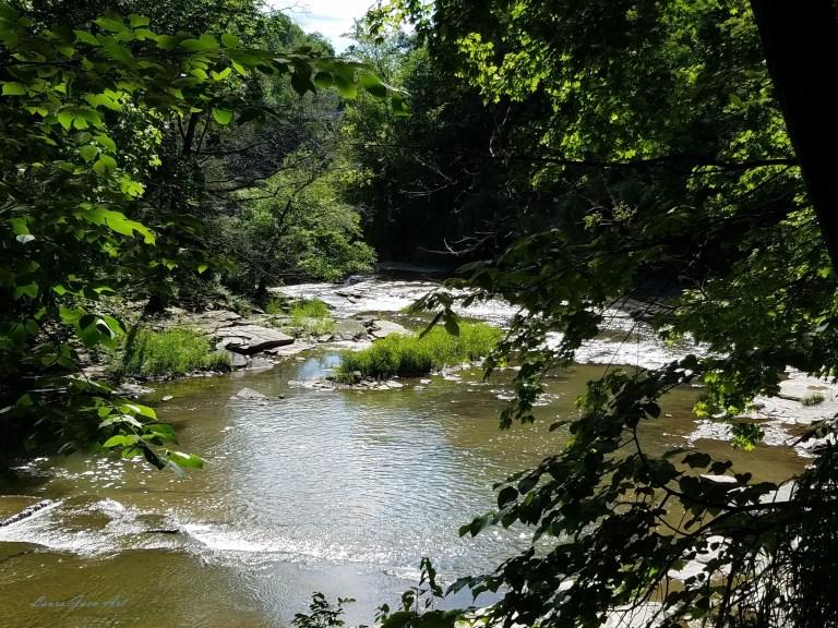 Photo of Fall Creek Gorge Ithaca NY by Laura Jaen Smith