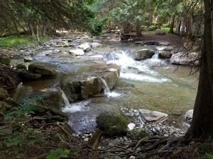 Photo of Oneida Creek near Stockbridge Falls by Laura Jaen Smith