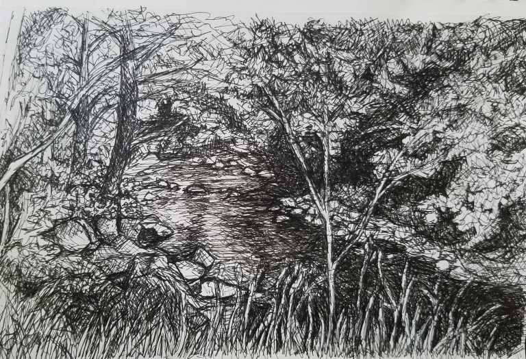 River in the Woods by Laura Jaen Smith. Black and white ink drawing from Keuka Lake Outlet Trail NY.