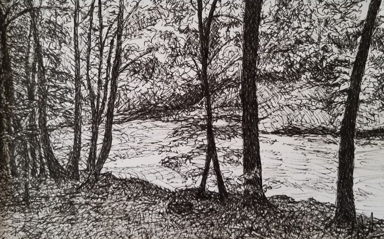 Through the Trees by Laura Jaen Smith. Black and white ink drawing of trees with Taughannock Creek in the background.