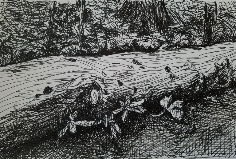 Just Resting by Laura Jaen Smith. Black and white ink drawing of fallen tree in forest.