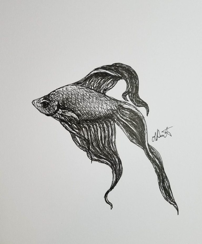 Betta by Laura Jaen Smith. Black and white ink drawing of betta fish with flowy fins swimming