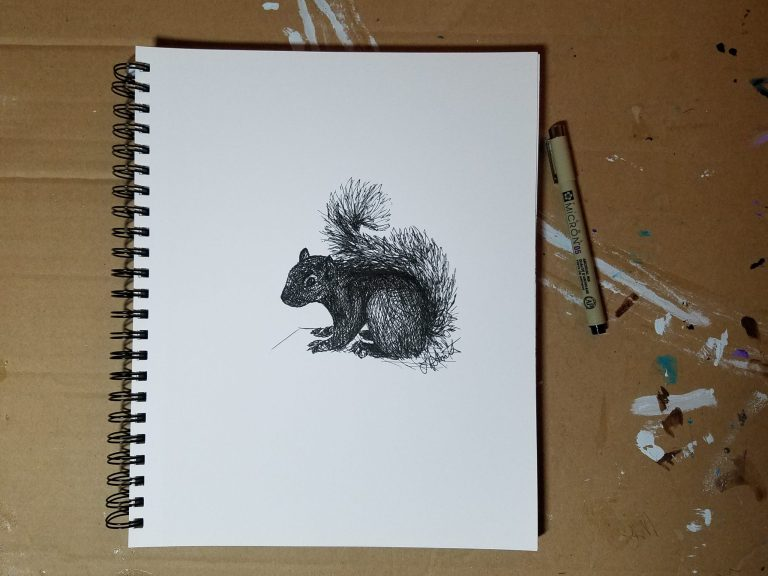 Sketchbook view with pen of Squirrel by Laura Jaen Smith. Black and white ink drawing of squirrel.