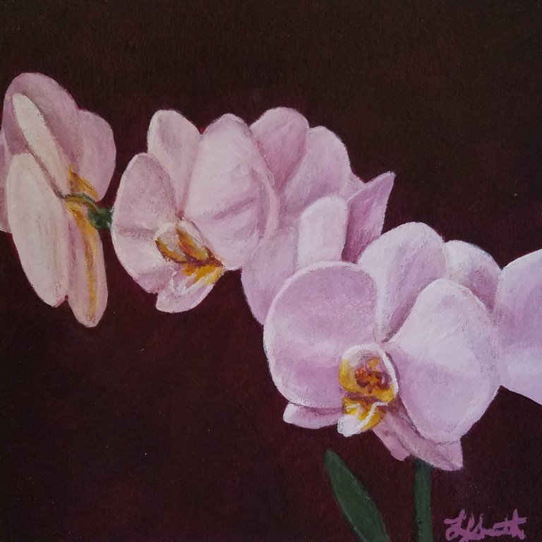 Orchid with Maroon by Laura Jaen Smith. Acrylic painting of light pink orchid with dark maroon background.