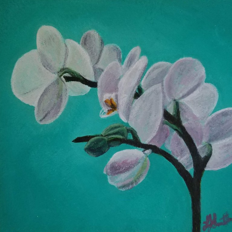 Orchid with Teal by Laura Jaen Smith. Acrylic painting of white orchid with teal blue background