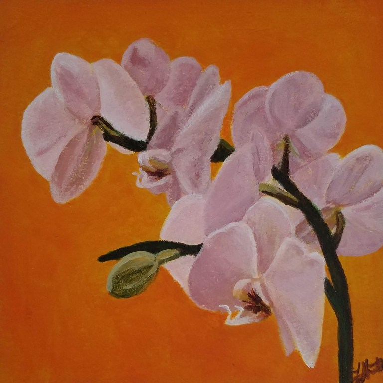 Orchid with Orange by Laura Jaen Smith. Acrylic painting of light pink orchids with orange background.