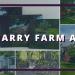 Quarry Farm Art blog cover