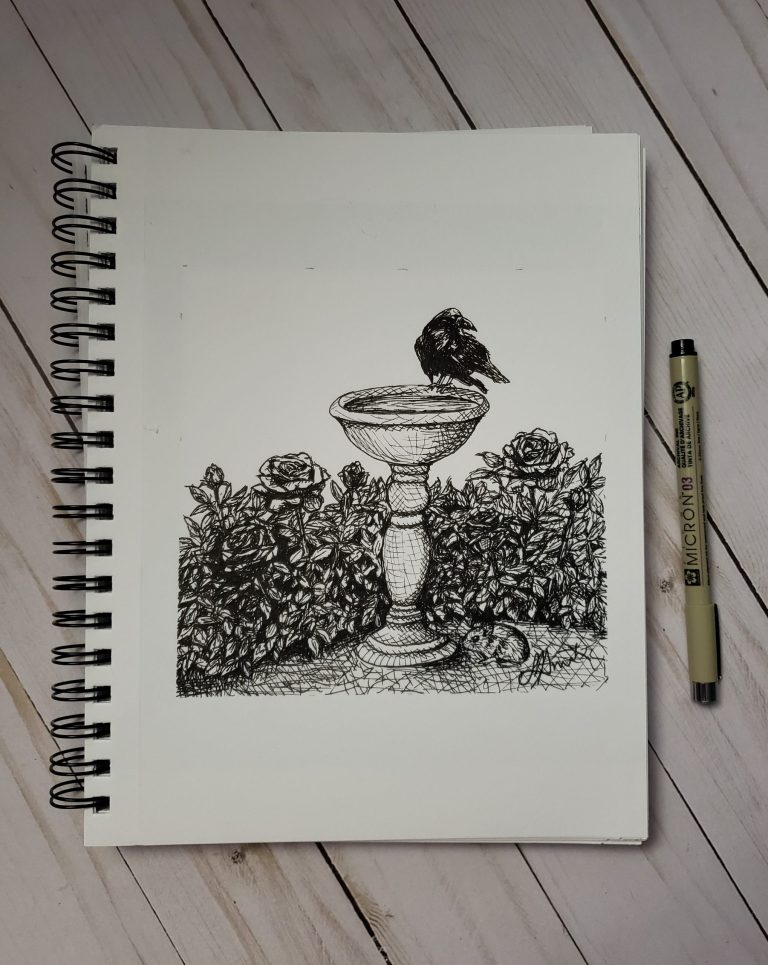 Inktober day 5 ink drawing challenge. Rose garden with decorative birdbath, raven sitting on top, mouse at bottom.